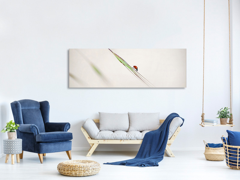 Panoramic Canvas Print Ladybug