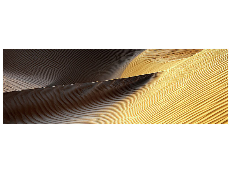 Panoramic Canvas Print Shapes Of The Wind II