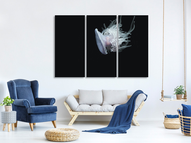 3 Piece Canvas Print Fascinating jellyfish XL