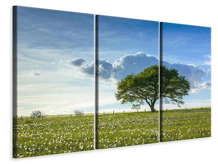 3 Piece Canvas Print Spring Tree