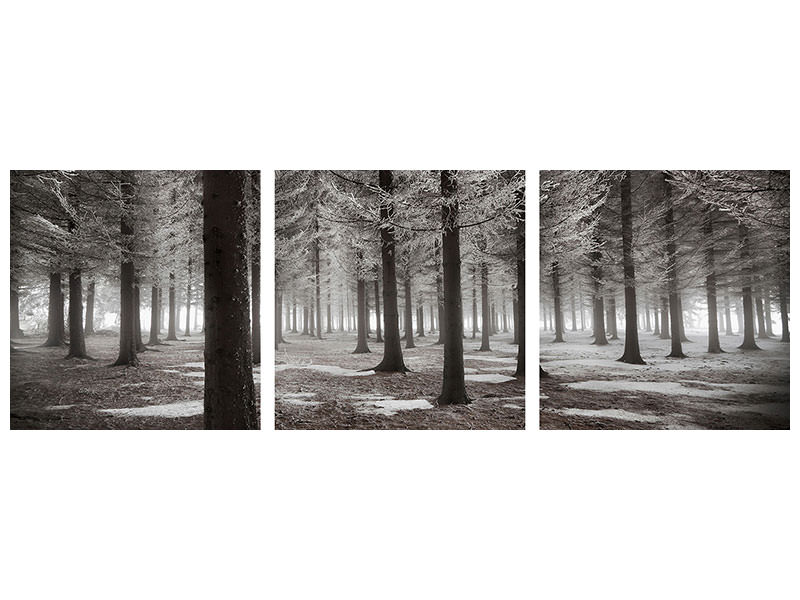 Tableau sur toile en 3 parties panoramique The Onset Of Winter