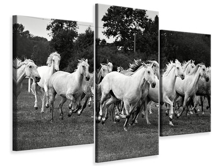 Modern 3 Piece Canvas Print The Mustang Herd