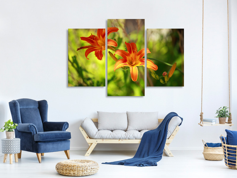 Modern 3 Piece Canvas Print Lilies In Nature