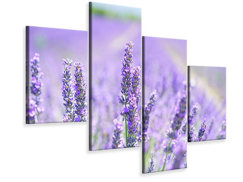 Modern 4 Piece Canvas Print The lavender blossom