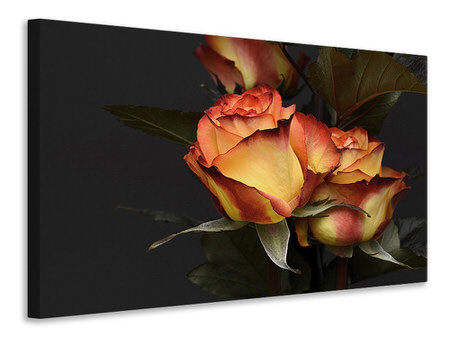 Canvas print Roses of the romance