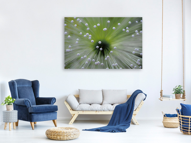 Canvas print Green And White II