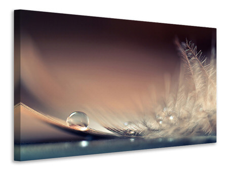 Canvas print Stories Of Drops